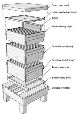 bouwtekening bijenkast